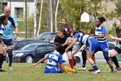 Rugby2016 (2)