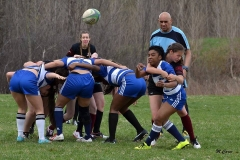 Rugby2016 (4)
